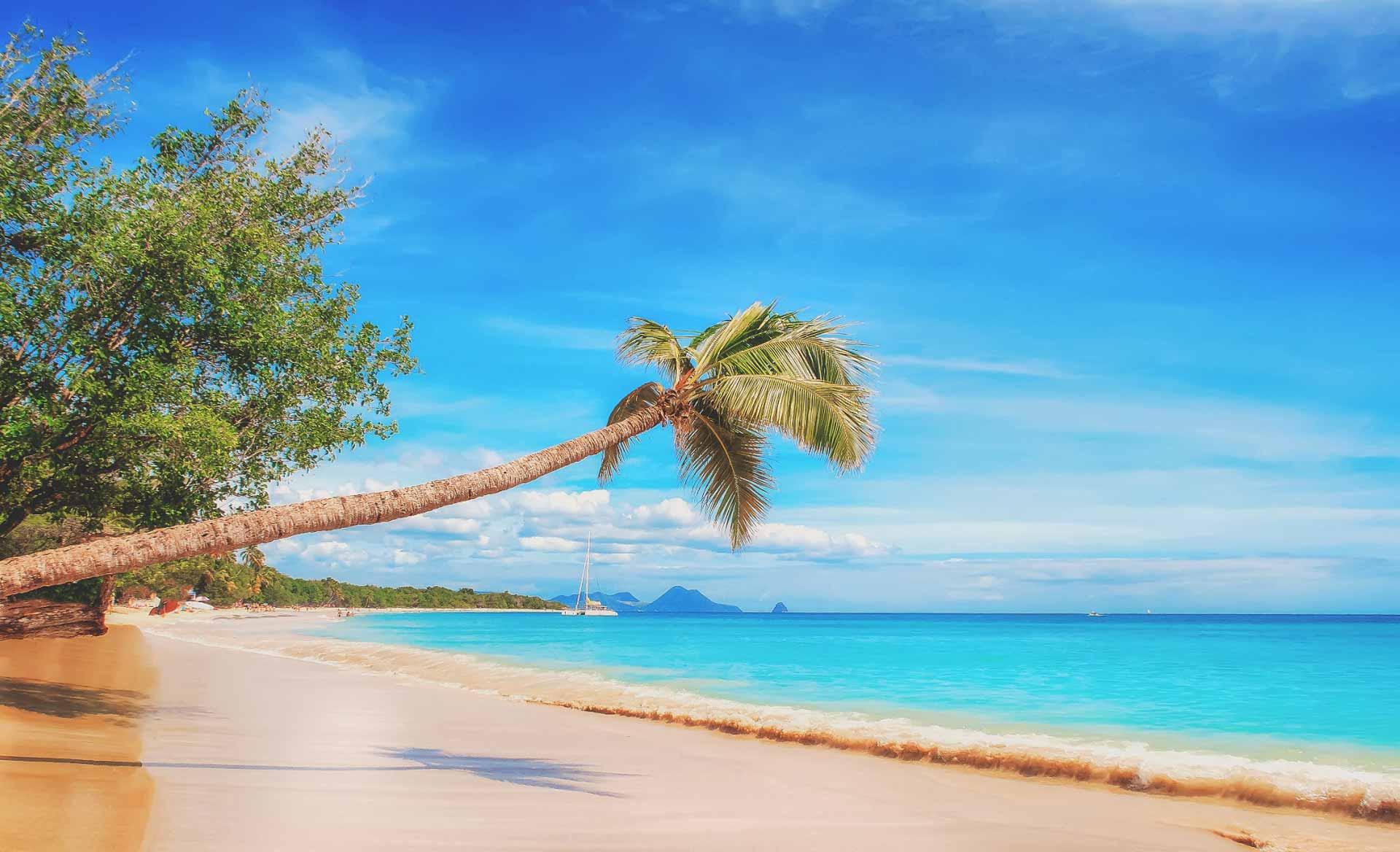 Pearl King Travel - Carribean