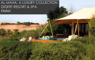 Pearl King Travel - Dubai Luxury Holiday Offer
