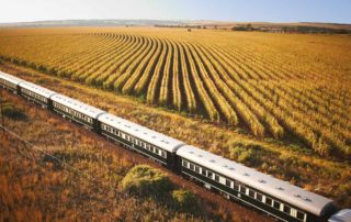 Pearl King Travel - South Africa Southern Crossrail Tour