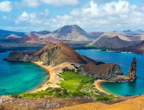 10 Nights Luxury Galapagos Escape